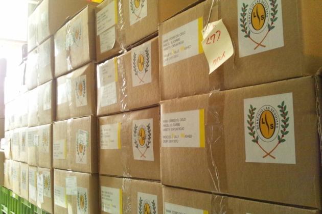 ニカラグアからコーヒー豆が届きました!