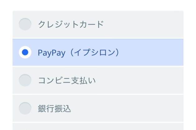 オンラインショップでPayPayが使えるようになりました